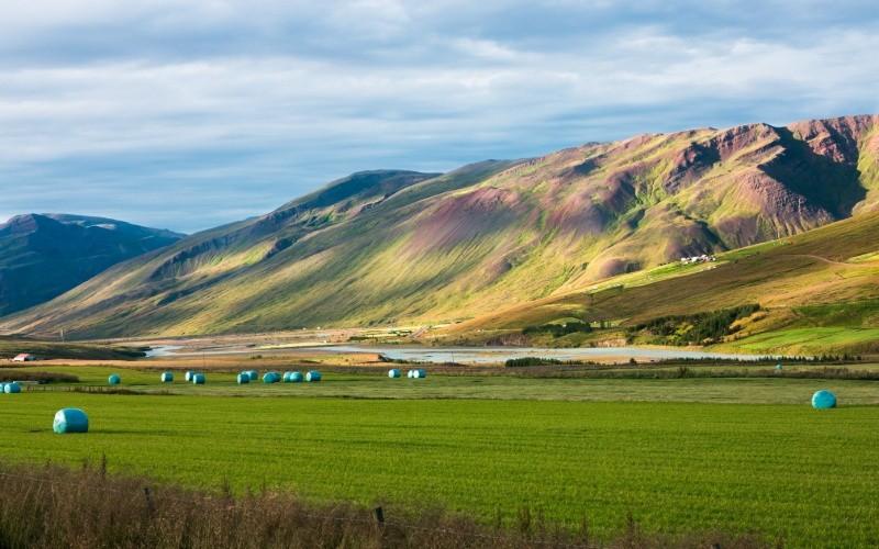 JOUR 8 : Siglufjörður - Varmahlíð/Laugarbakki