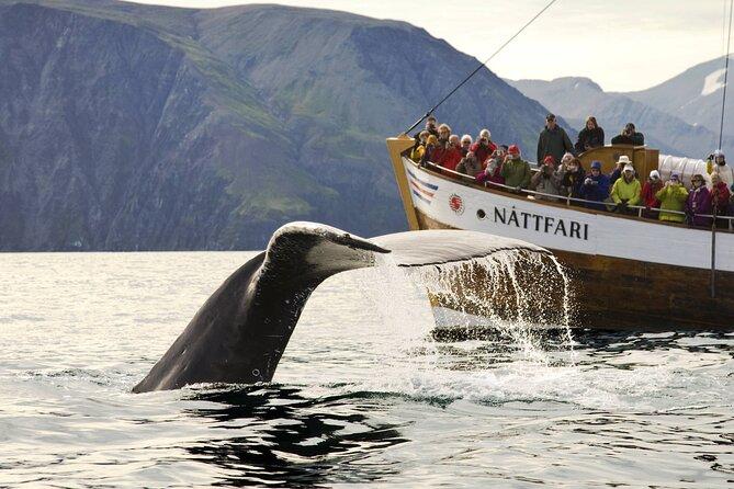 Nature à couper le souffle de la baie d'Isafjardardjup lors d'une excursion d'observation des baleines